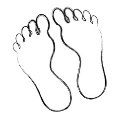 Foot plants isolated icon vector illustration design