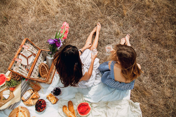 Beautiful young girls girlfriends on a picnic on a summer day. The concept of leisure, privacy, communication, vacation, tourism