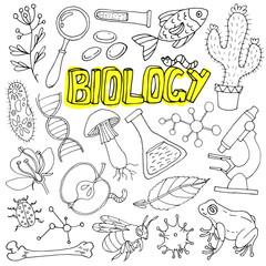 Vector biology science doodles. Back to school illustration.