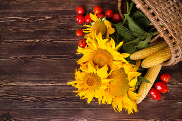 Sunflowers and vegetables on wooden background. Autumn background