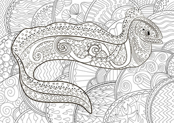 Illustration of a moray in zentangle style.