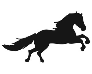 Black silhouette of a fast horse