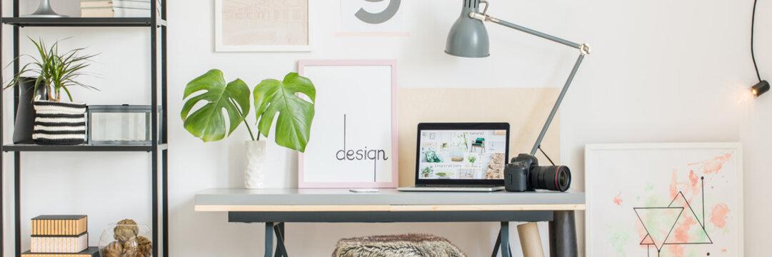 Desk, laptop, camera and monstera