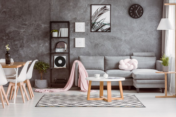 Grey couch set in living room
