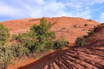 gemusterte rote Sandsteinfelsen in einer Wüstenlandschaft in Utah