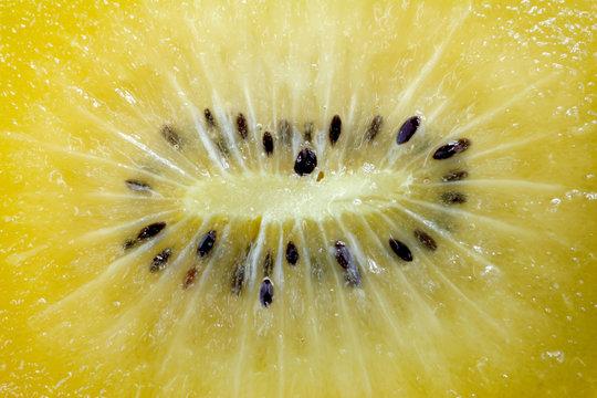 close up of SunGold kiwi fruit slices
