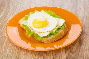 Sandwich with lettuce, cheese and fried egg in plate