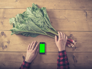 Man with rhubarb using smart phone