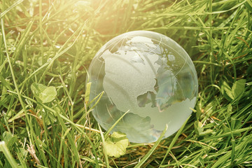 Glass globe in the grass concept for environment protection