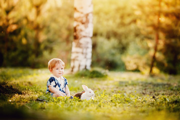 Little baby boy playing with rabbits against the sunset in the park, warm light, glare from the sun and light. Concept childhood.
