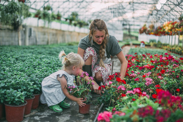 Beautiful woman and her daughter working in the greenhouse