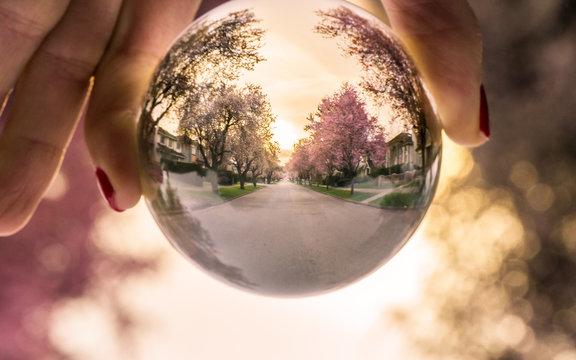 Cherry Globe