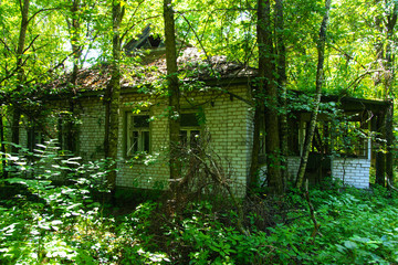 Destroyed houses in which people lived in a dead radioactive zone. Consequences of the Chernobyl nuclear disaster and vandalism, August 2017.