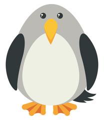 Gray bird with happy face