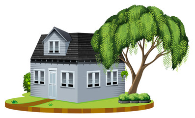 Gray house with big tree in lawn