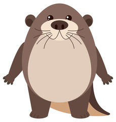 Cute otter on white background