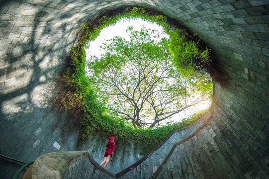 Woman at Fort Canning Park, Singapore