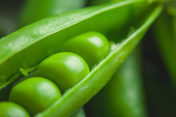 Fresh pea pods and peas closeup, macro