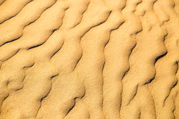 Sand in the desert as a background