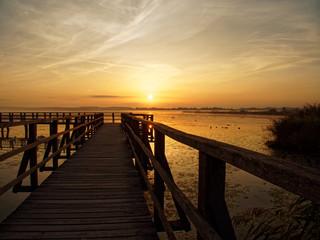 Steg bei Sonnenaufgang