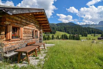 Alm-Idylle in Südtirol mit uriger Hütte
