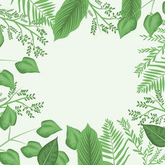 white background with decorative border with leaves and branches vector illustration