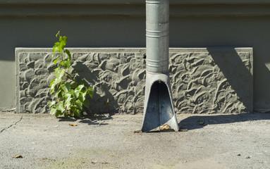 drain drainpipe building and plant