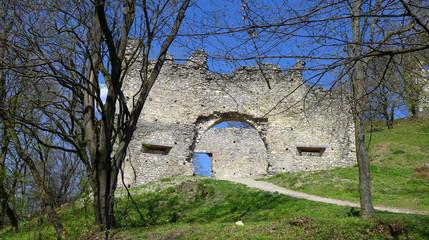 Ruins of Brekov Castle, Slovakia