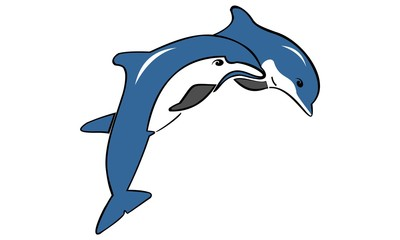 the dolphin logo jumps