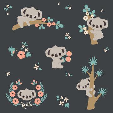 Cute koala in different poses. Set of vector koalas