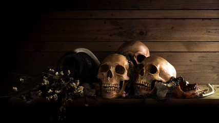 The art vision still life image of skulls and bone with dry flowers in dark tone and dim light room.