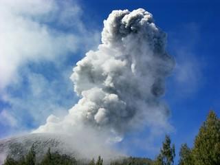 Aschewolke während einer Eruption des Gifelkraters auf dem Vulkan Semeru (3676 m) in Java/Indonesien