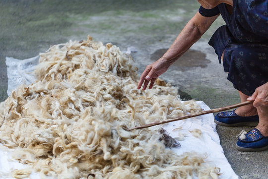 sheeps processing of sheep's wool traditional