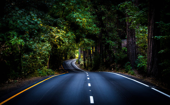 Life Is A Winding Road
