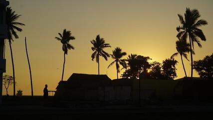 Manzanillo Sunset