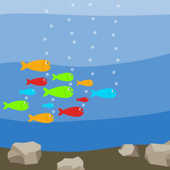 A flock of colorful fish in the water, many fish