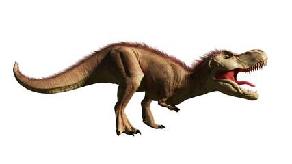 Tyrannosaurus rex, T-rex dinosaur from the Jurassic period