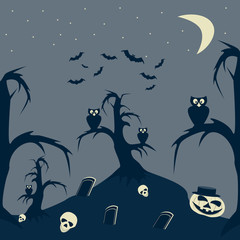 Halloween Night cartoon picture
