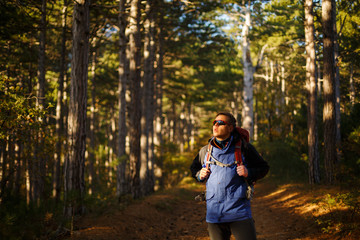 Hiker man walks in a pine yellow autumn forest. Backpacker enjoys fall landscape. Tourist wears sport sunglasses.