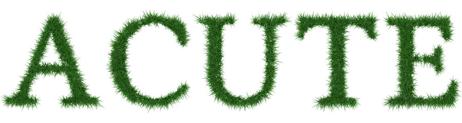 Acute - 3D rendering fresh Grass letters isolated on whhite background.