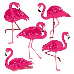 Door stickers Flamingo Vector set with pink flamingos. Hand Drawn illustration