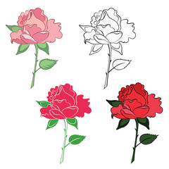 Set of roses in different art style.