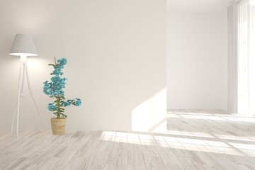 Idea of white empty room with flower and lamp. Scandinavian interior design. 3D illustration