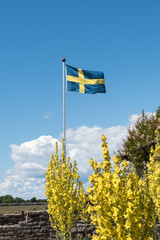Waving swedish flag