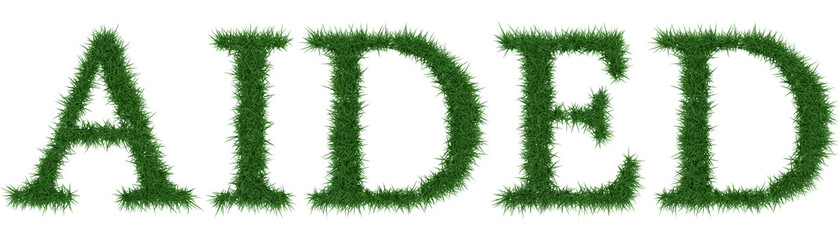Aided - 3D rendering fresh Grass letters isolated on whhite background.