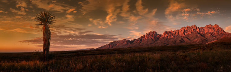 Fotorolgordijn Chocoladebruin Organ Mountains Panorama, Sunset