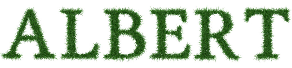 Albert - 3D rendering fresh Grass letters isolated on whhite background.