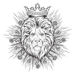 Hand drawn crowned lion head in sun rays isolated over white background vector illustration. Logo, blazon or print design