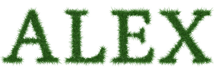 Alex - 3D rendering fresh Grass letters isolated on whhite background.