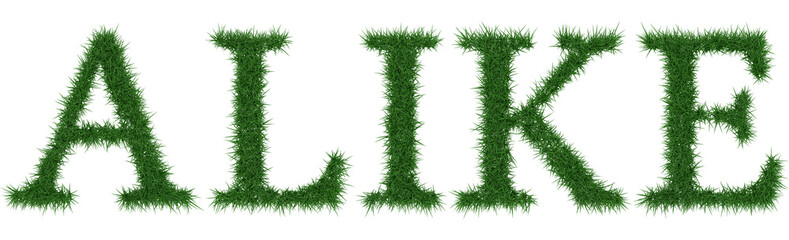Alike - 3D rendering fresh Grass letters isolated on whhite background.